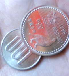 200404291121.jpg