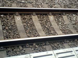 中央線、いや総武線の線路っス